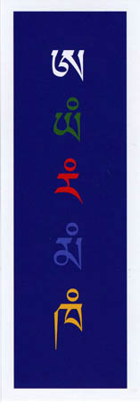 Imagen proviene del archivo del Instituto Ligmincha